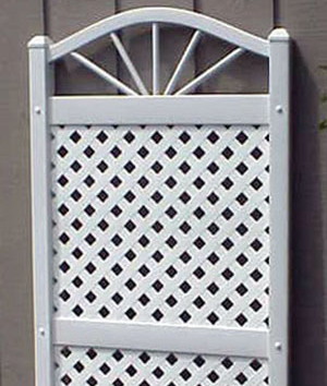 Sunburst Trellis with White Lattice