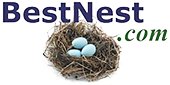 best-nest-logo.png