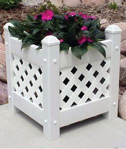 Small Lattice Planter with White Lattice